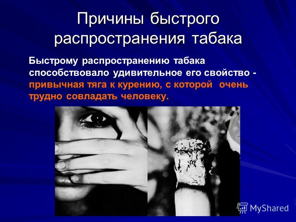 Причины быстрого распространения табака Быстрому распространению табака способствовало удивительное его свойство - привычная тяга к курению, с которой очень трудно совладать человеку.