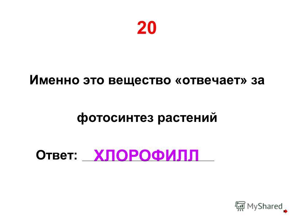 20 Именно это вещество «отвечает» за фотосинтез растений Ответ: ХЛОРОФИЛЛ