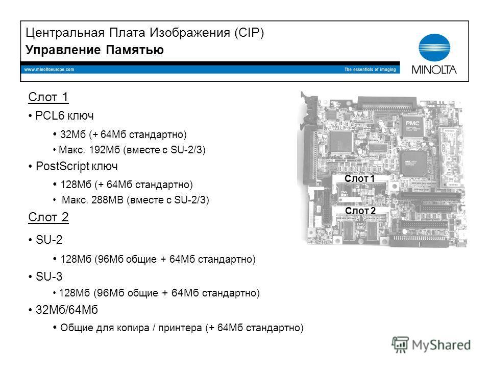 Слот 1 PCL6 ключ 32Mб (+ 64Mб стандартно) Макс. 192Mб (вместе с SU-2/3) PostScript ключ 128Mб (+ 64Mб стандартно) Макс. 288MB (вместе с SU-2/3) Слот 2 SU-2 128Mб (96Mб общие + 64Mб стандартно) SU-3 128Mб (96Mб общие + 64Mб стандартно ) 32Mб/64Mб Общи
