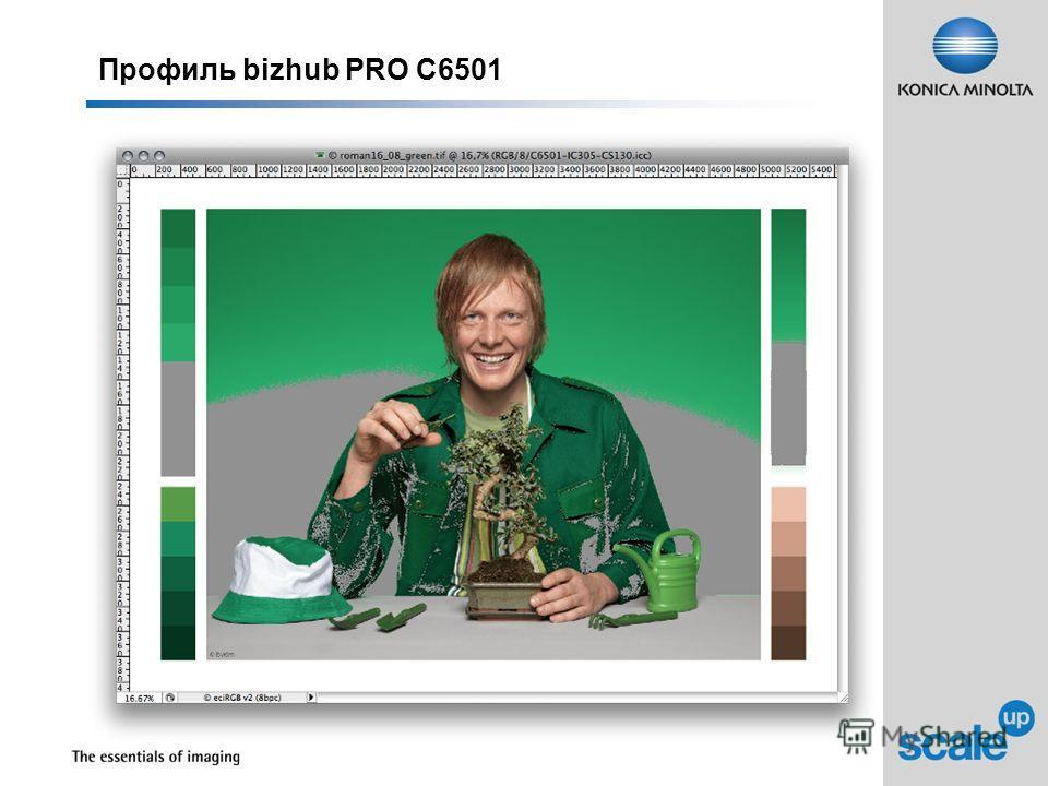Профиль bizhub PRO C6501