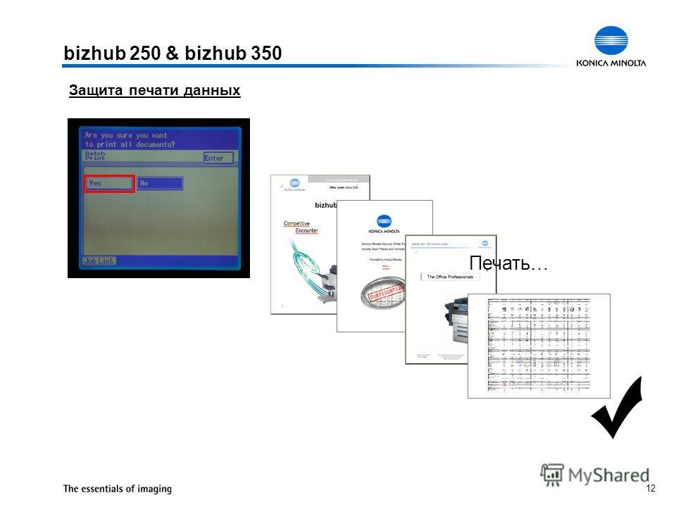 12 bizhub 250 & bizhub 350 Защита печати данных Печать…