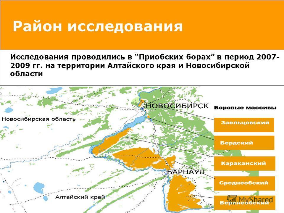 Район исследования Исследования проводились в Приобских борах в период 2007- 2009 гг. на территории Алтайского края и Новосибирской области