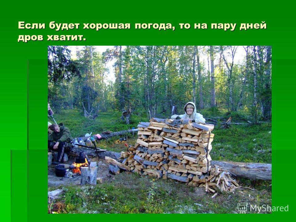 Если будет хорошая погода, то на пару дней дров хватит.