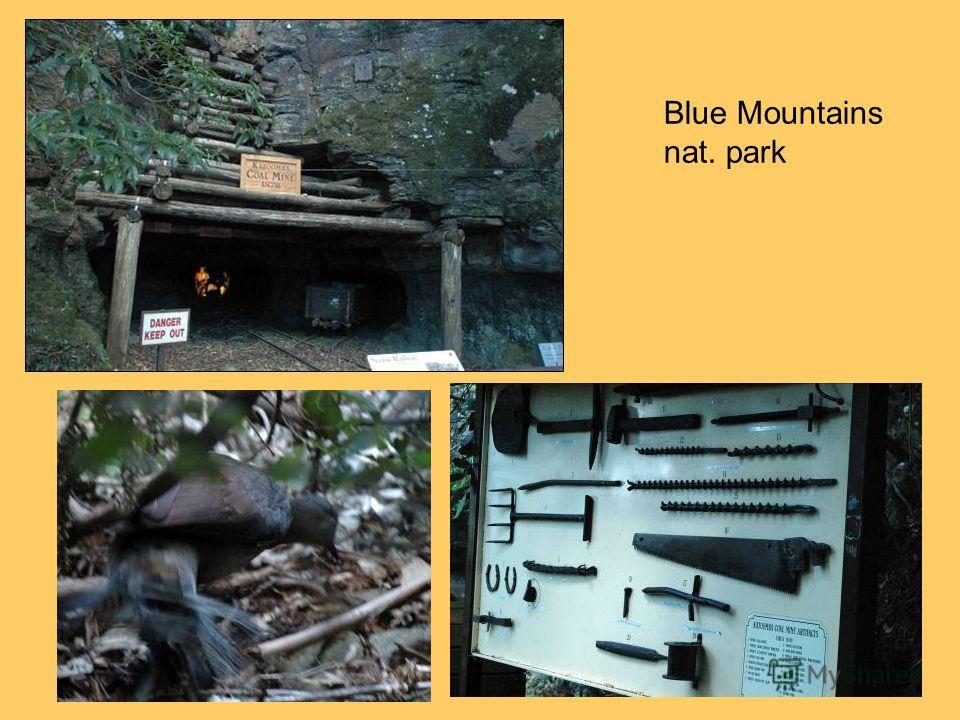 Blue Mountains nat. park