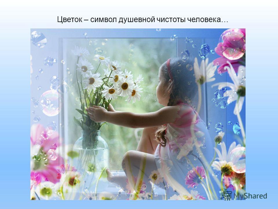 Цветок – символ душевной чистоты человека…