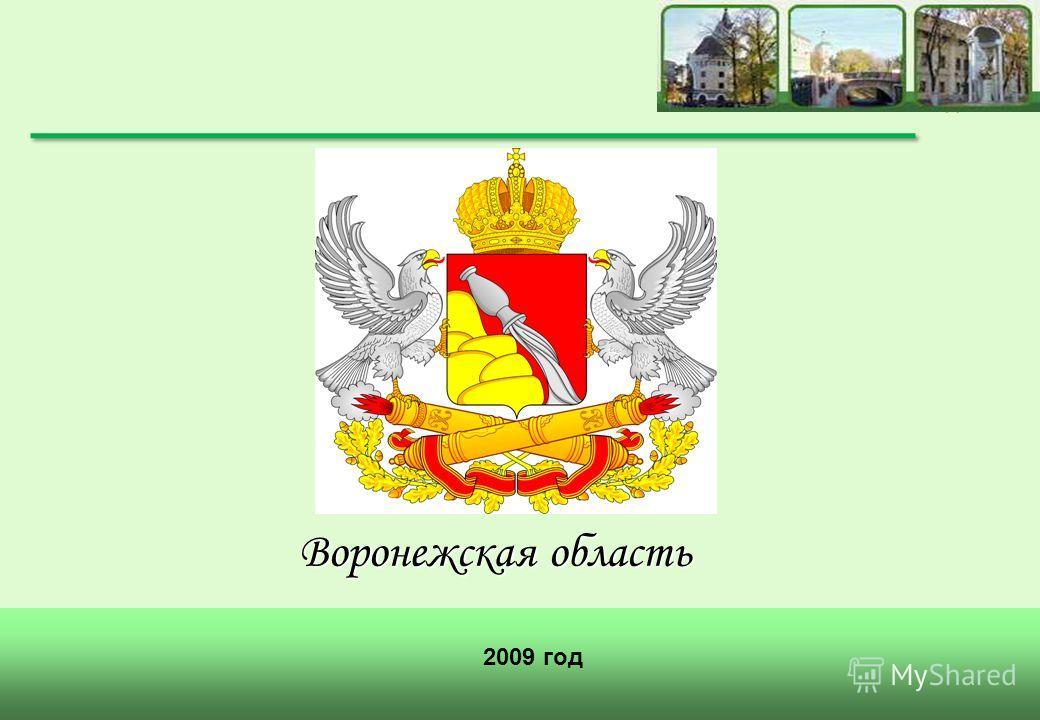 Воронежская область 2009 год