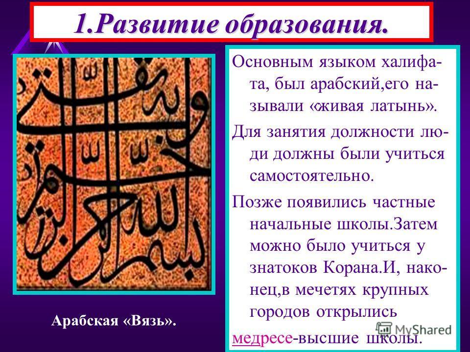 1.Развитие образования. Основным языком халифа- та, был арабский,его на- зывали «живая латынь». Для занятия должности лю- ди должны были учиться самостоятельно. Позже появились частные начальные школы.Затем можно было учиться у знатоков Корана.И, нак