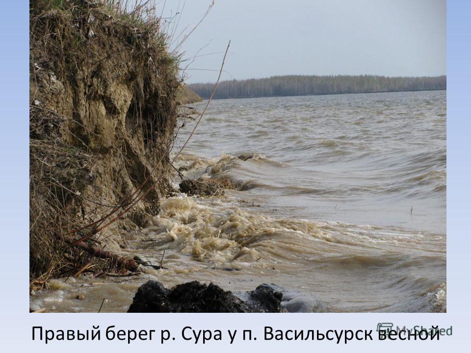 Правый берег р. Сура у п. Васильсурск весной