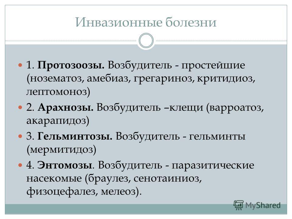 Инвазионные болезни 1. Протозоозы. Возбудитель - простейшие (нозематоз, амебиаз, грегариноз, критидиоз, лептомоноз) 2. Арахнозы. Возбудитель –клещи (варроатоз, акарапидоз) 3. Гельминтозы. Возбудитель - гельминты (мермитидоз) 4. Энтомозы. Возбудитель