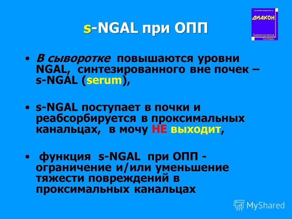 s-NGAL при ОПП В сыворотке повышаются уровни NGAL, синтезированного вне почек – s-NGAL (serum), s-NGAL поступает в почки и реабсорбируется в проксимальных канальцах, в мочу НЕ выходит, функция s-NGAL при ОПП - ограничение и/или уменьшение тяжести пов