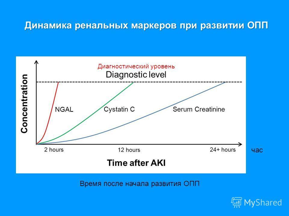 Динамика ренальных маркеров при развитии ОПП Динамика ренальных маркеров при развитии ОПП Диагностический уровень Время после начала развития ОПП час
