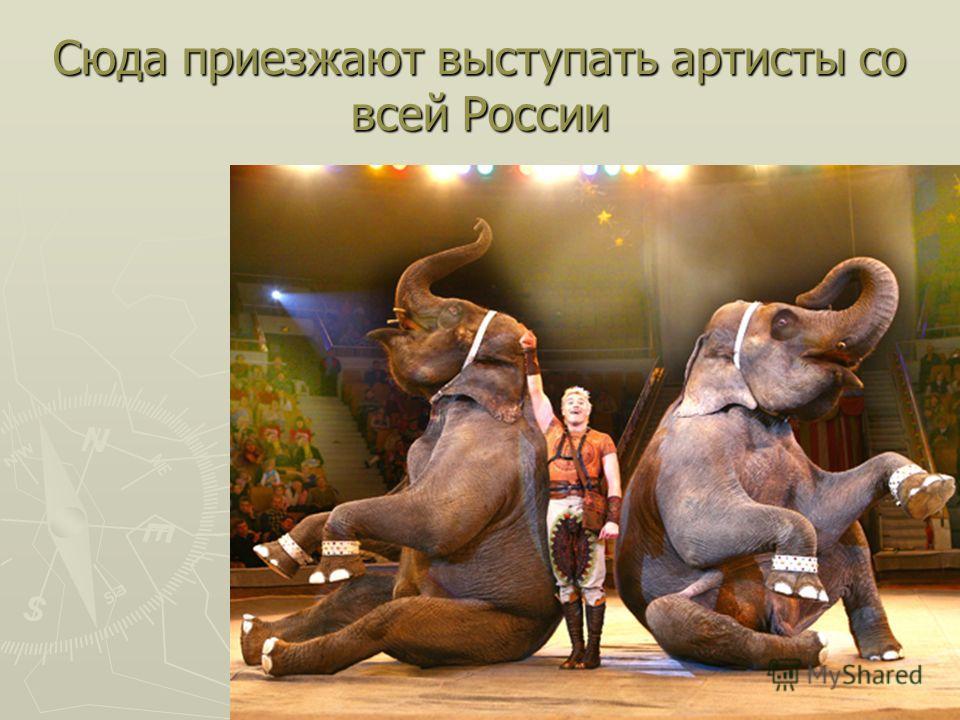 Сюда приезжают выступать артисты со всей России
