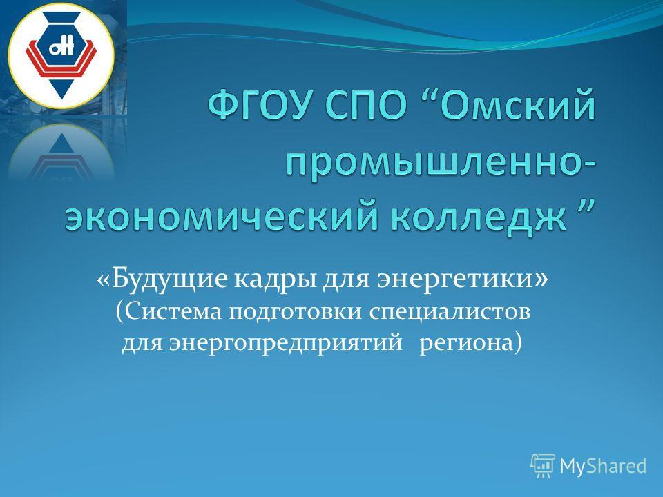«Будущие кадры для энергетики » (Система подготовки специалистов для энергопредприятий региона)