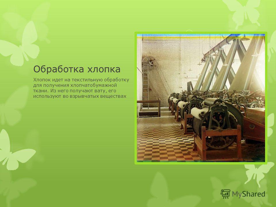 Обработка хлопка Хлопок идет на текстильную обработку для получения хлопчатобумажной ткани. Из него получают вату, его используют во взрывчатых веществах