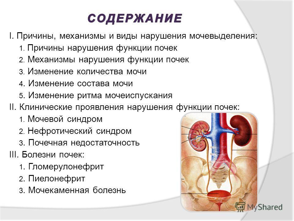I. Причины, механизмы и виды нарушения мочевыделения: 1. Причины нарушения функции почек 2. Механизмы нарушения функции почек 3. Изменение количества мочи 4. Изменение состава мочи 5. Изменение ритма мочеиспускания II. Клинические проявления нарушени