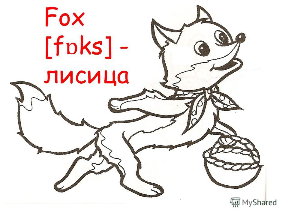 Fox [f ɒ ks] - лисица