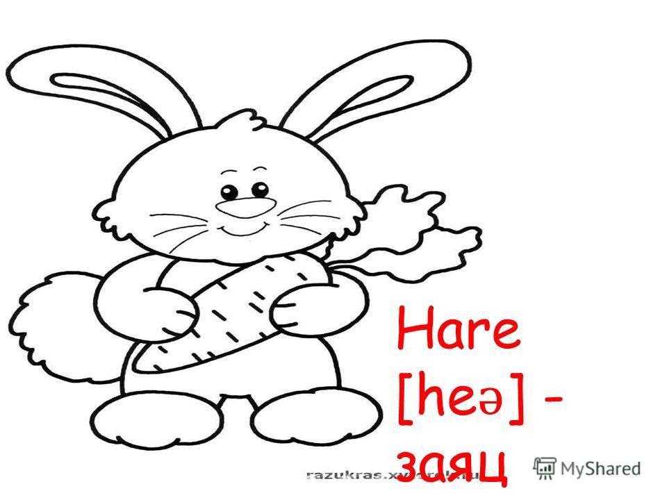 Hare [he ǝ ] - заяц