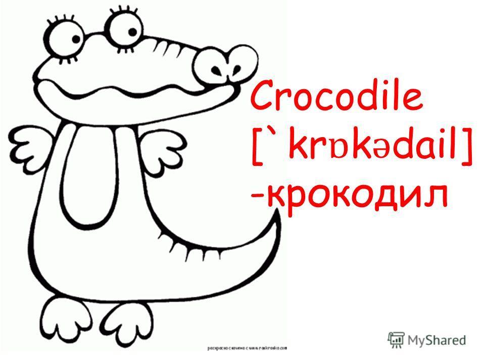 Crocodile [`kr ɒ k ǝ dail] -крокодил