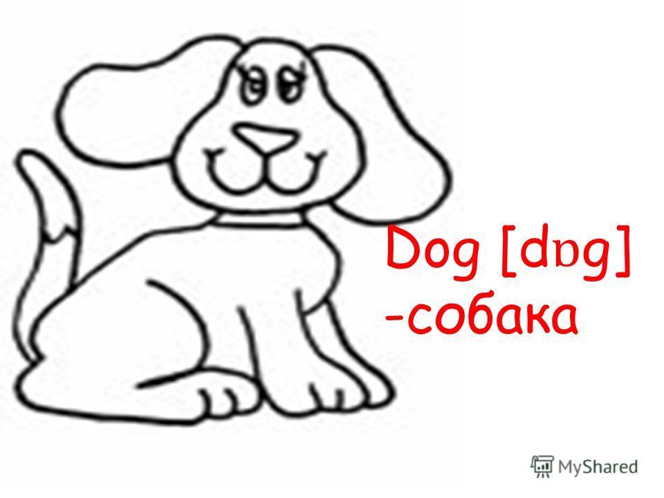 Dog [d ɒ g] -собака