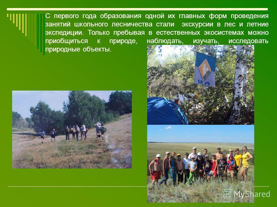 С первого года образования одной их главных форм проведения занятий школьного лесничества стали экскурсии в лес и летние экспедиции. Только пребывая в естественных экосистемах можно приобщиться к природе, наблюдать, изучать, исследовать природные объ