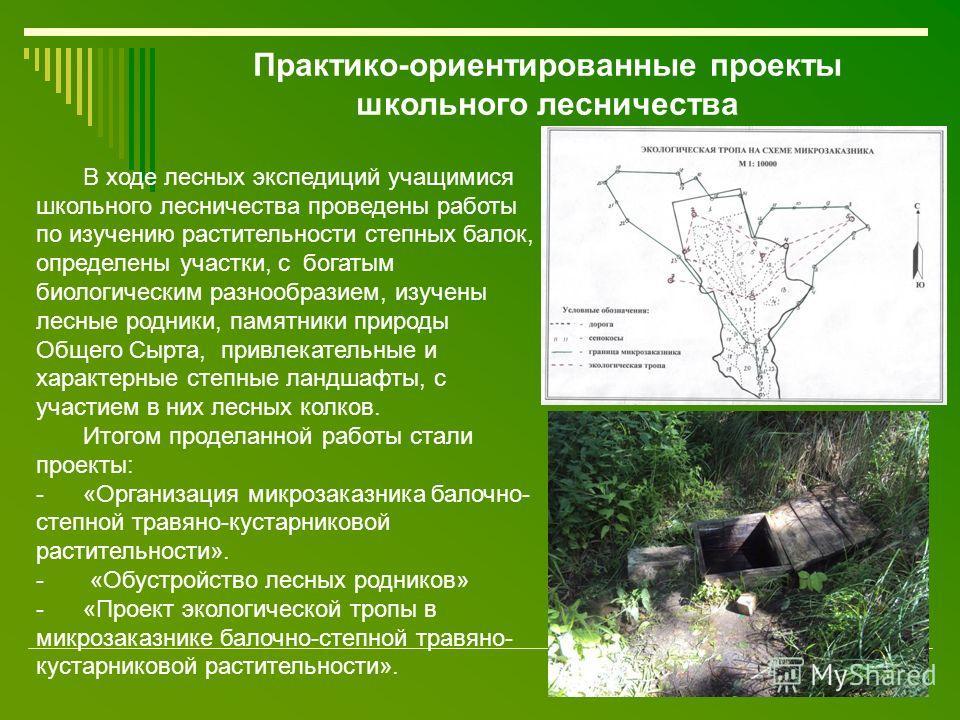 В ходе лесных экспедиций учащимися школьного лесничества проведены работы по изучению растительности степных балок, определены участки, с богатым биологическим разнообразием, изучены лесные родники, памятники природы Общего Сырта, привлекательные и х