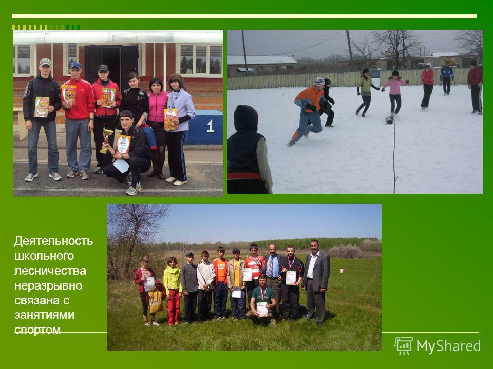 Деятельность школьного лесничества неразрывно связана с занятиями спортом