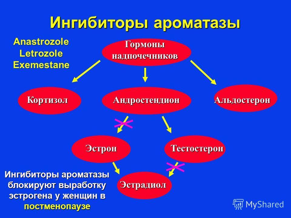 Ингибиторы ароматазы Гормоны надпочечников КортизолАндростендионАльдостерон Эстрадиол ТестостеронЭстрон Ингибиторы ароматазы блокируют выработку эстрогена у женщин в постменопаузе AnastrozoleLetrozoleExemestane