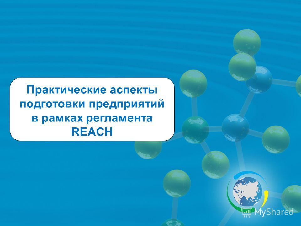 Практические аспекты подготовки предприятий в рамках регламента REACH