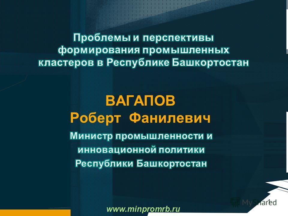 1 www.minpromrb.ru ВАГАПОВ Роберт Фанилевич