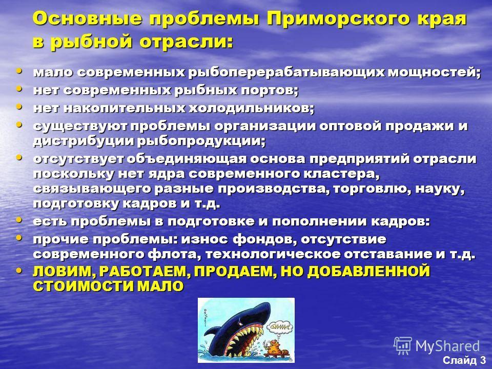 Основные проблемы Приморского края в рыбной отрасли: мало современных рыбоперерабатывающих мощностей; мало современных рыбоперерабатывающих мощностей; нет современных рыбных портов; нет современных рыбных портов; нет накопительных холодильников; нет