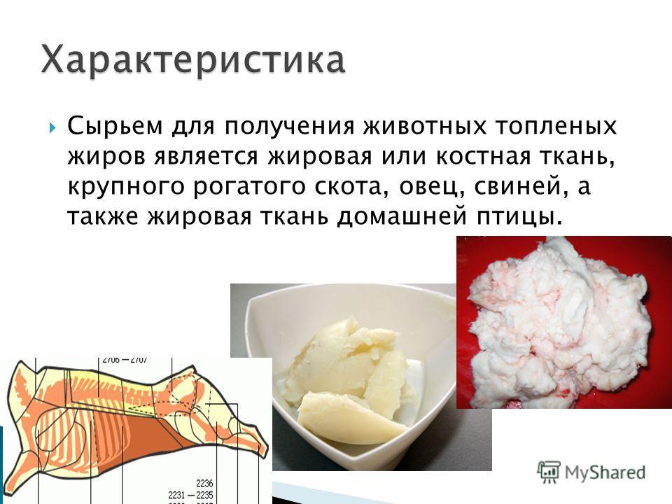 Сырьем для получения животных топленых жиров является жировая или костная ткань, крупного рогатого скота, овец, свиней, а также жировая ткань домашней птицы.