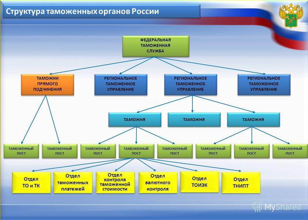 610 Структура таможенных органов России ФЕДЕРАЛЬНАЯ ТАМОЖЕННАЯ СЛУЖБА ФЕДЕРАЛЬНАЯ ТАМОЖЕННАЯ СЛУЖБА ТАМОЖНИ ПРЯМОГО ПОДЧИНЕНИЯ ТАМОЖНИ ПРЯМОГО ПОДЧИНЕНИЯ РЕГИОНАЛЬНОЕ ТАМОЖЕННОЕ УПРАВЛЕНИЕ РЕГИОНАЛЬНОЕ ТАМОЖЕННОЕ УПРАВЛЕНИЕ РЕГИОНАЛЬНОЕ ТАМОЖЕННОЕ УП