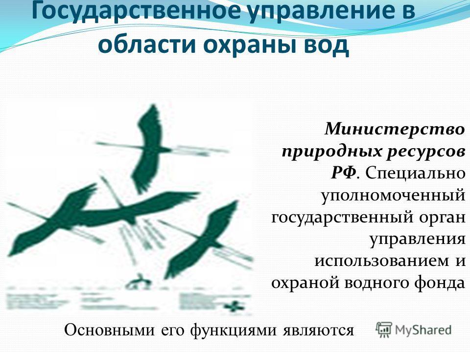 Государственное управление в области охраны вод Министерство природных ресурсов РФ. Специально уполномоченный государственный орган управления использованием и охраной водного фонда Основными его функциями являются