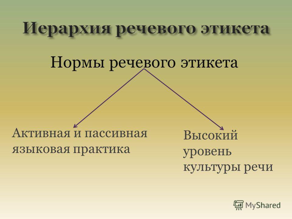 Нормы речевого этикета Активная и пассивная языковая практика Высокий уровень культуры речи