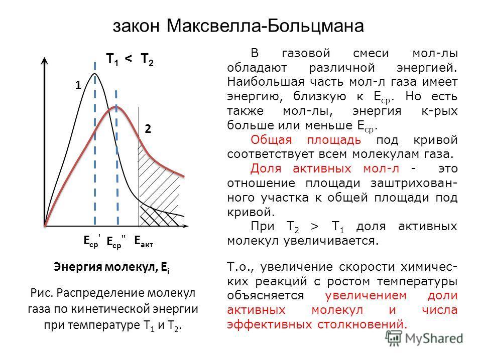 закон Максвелла-Больцмана В газовой смеси мол-лы обладают различной энергией. Наибольшая часть мол-л газа имеет энергию, близкую к Е ср. Но есть также мол-лы, энергия к-рых больше или меньше Е ср. Общая площадь под кривой соответствует всем молекулам