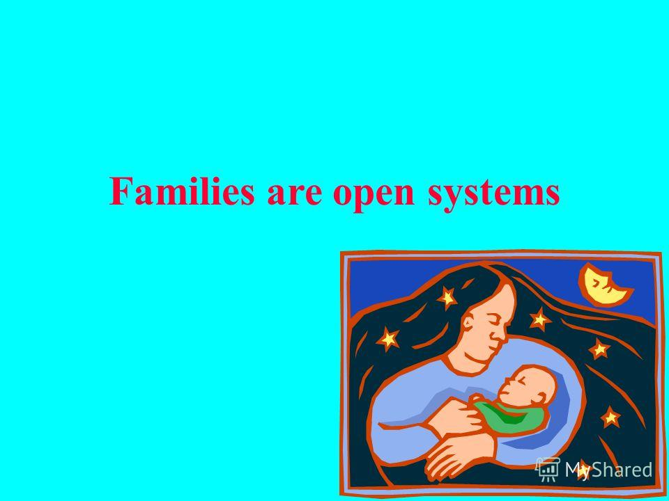 Families are open systems