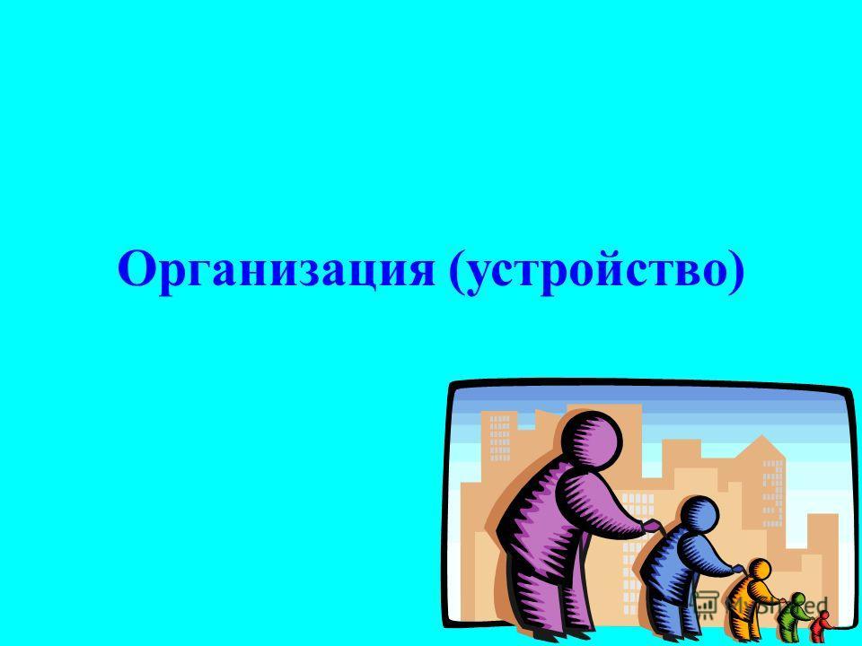 Организация (устройство)