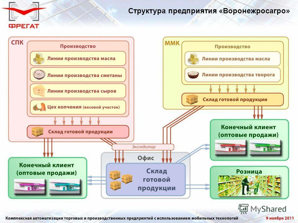 Структура предприятия «Воронежросагро»