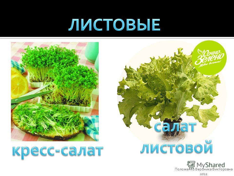 Положенко Вероника Викторовна 2012