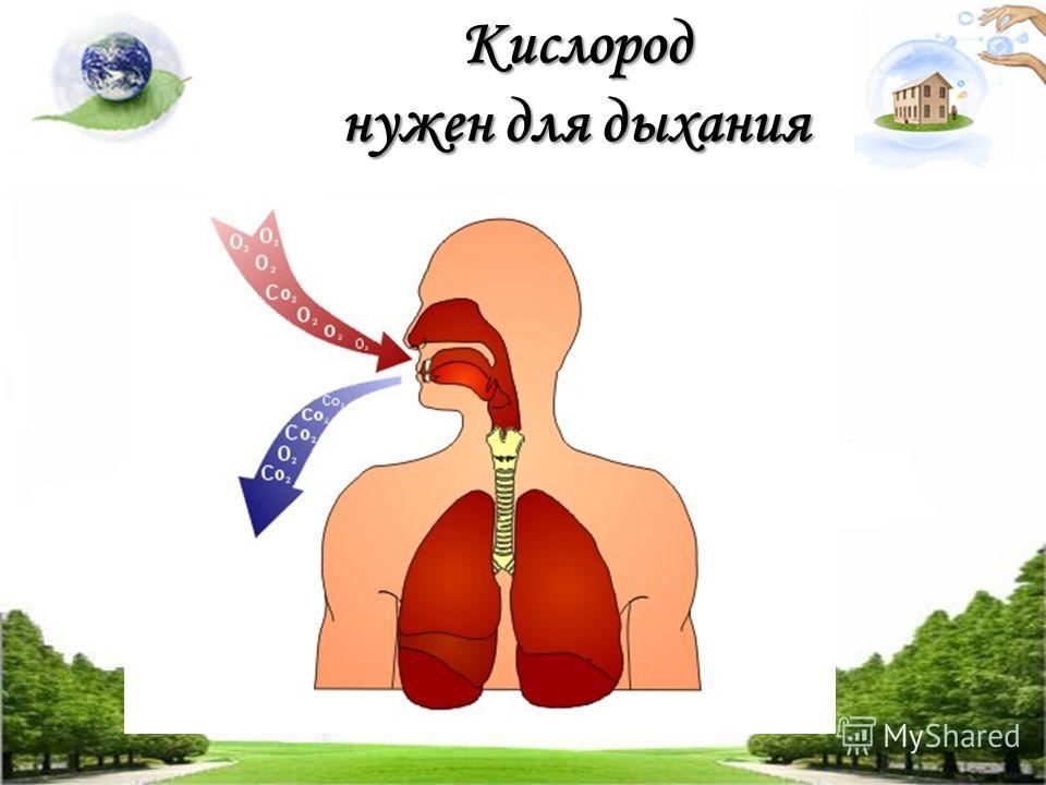Кислород нужен для дыхания