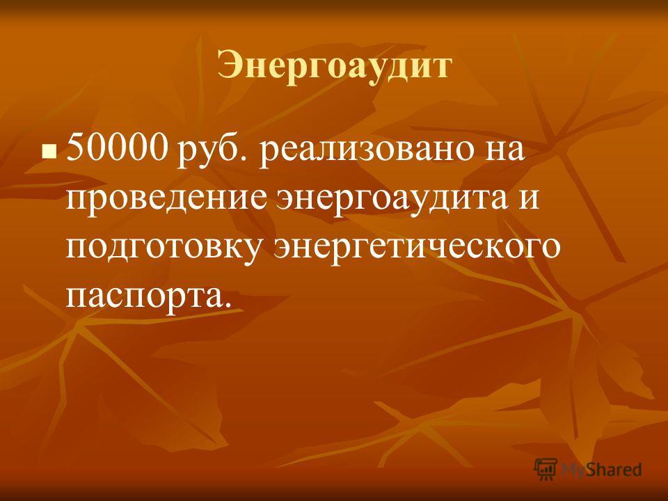 Энергоаудит 50000 руб. реализовано на проведение энергоаудита и подготовку энергетического паспорта.
