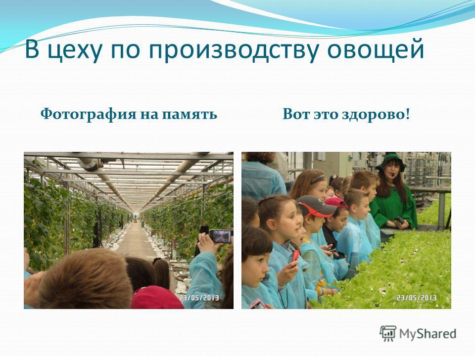 В цеху по производству овощей Фотография на память Вот это здорово!