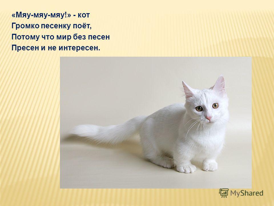 «Мяу-мяу-мяу!» - кот Громко песенку поёт, Потому что мир без песен Пресен и не интересен.