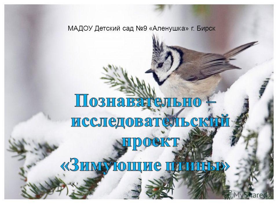 МАДОУ Детский сад 9 «Аленушка» г. Бирск