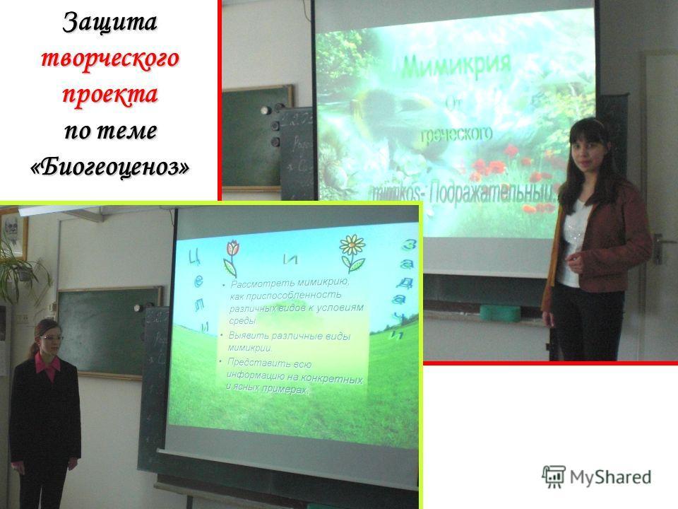 Защита творческого проекта по теме «Биогеоценоз»
