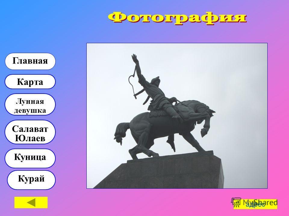 Куница Курай Карта Лунная девушка Главная Салават Юлаев адрес