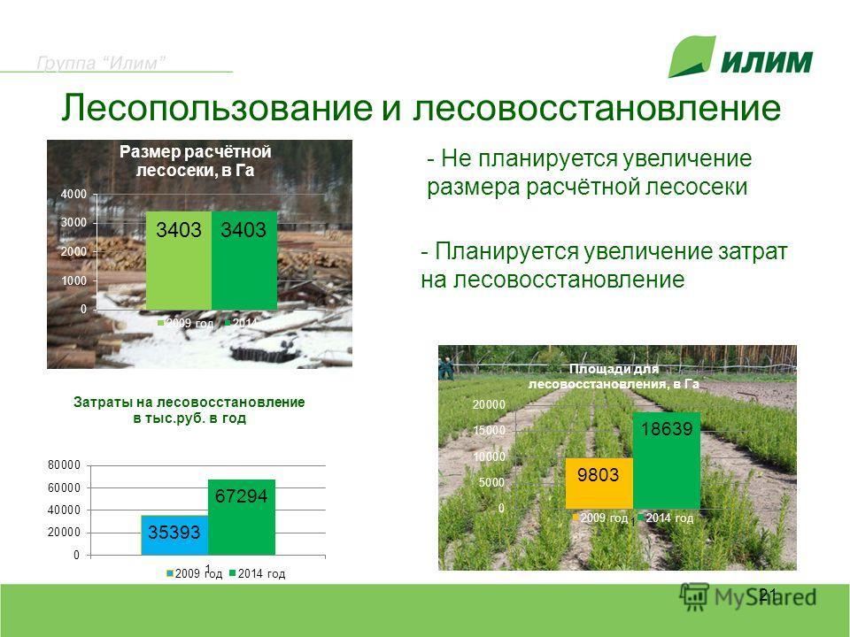 Лесопользование и лесовосстановление 21 - Не планируется увеличение размера расчётной лесосеки - Планируется увеличение затрат на лесовосстановление