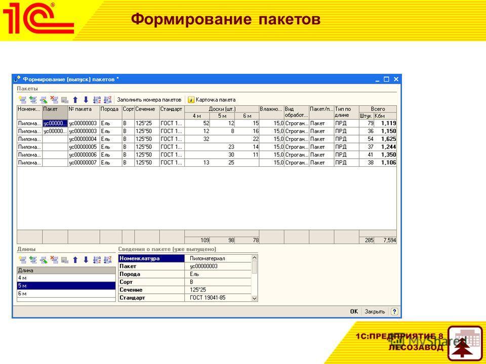 Формирование пакетов Обработка подбора «Формирование пакетов»