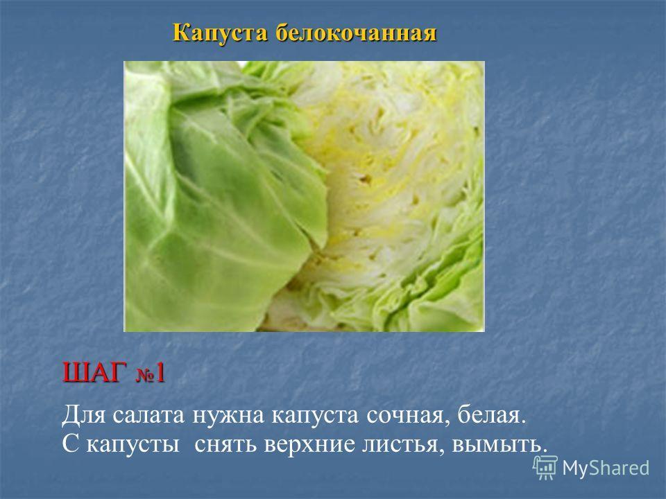 Капуста белокочанная ШАГ 1 Для салата нужна капуста сочная, белая. С капусты снять верхние листья, вымыть.