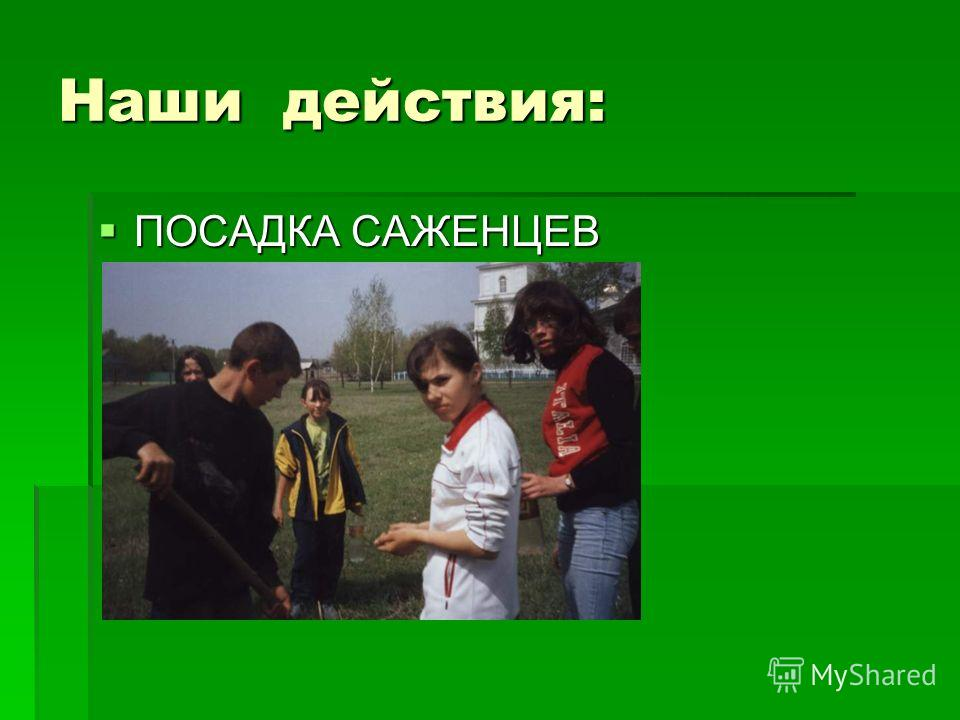 Наши действия: ПОСАДКА САЖЕНЦЕВ ПОСАДКА САЖЕНЦЕВ